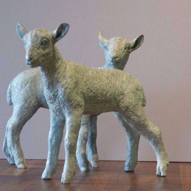 Lambs (I) & (II)
