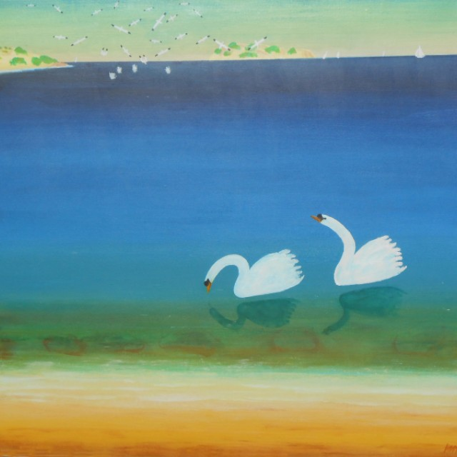 Gannets and Swans
