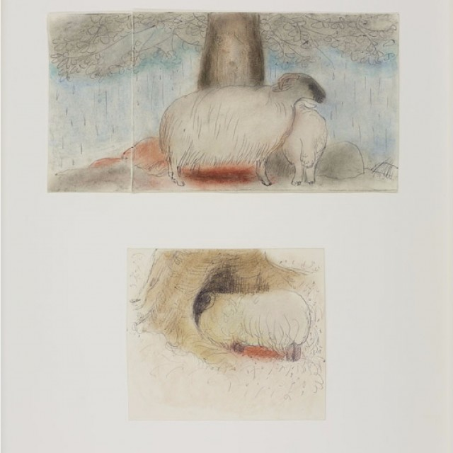 Sheep and Cherry Tree, 1980