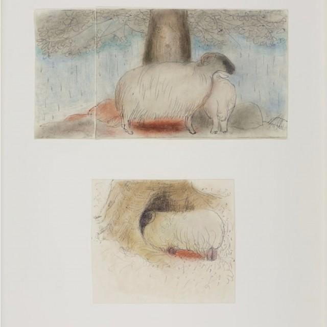Sheep & Cherry Tree, 1980