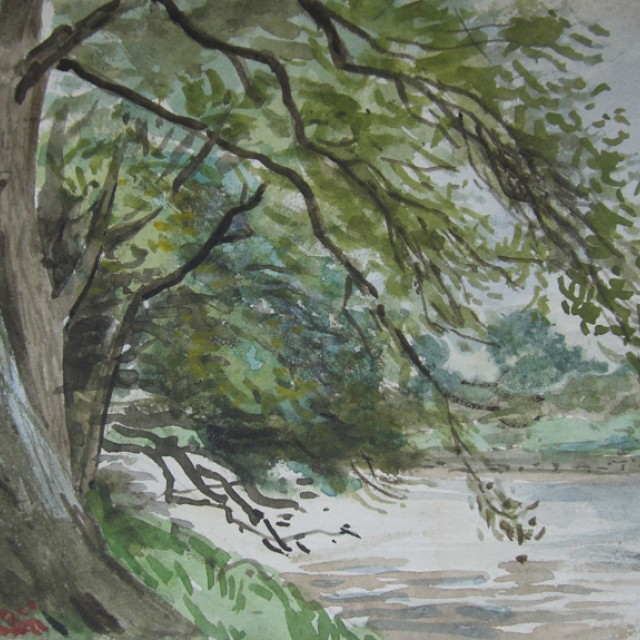 Trees by River