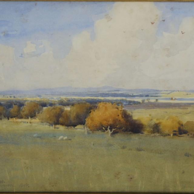 A Dumfriesshire Meadow